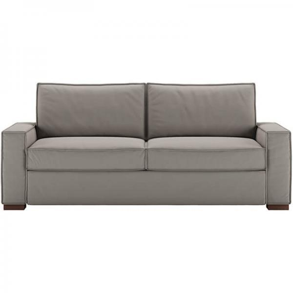 gray sleeper couch