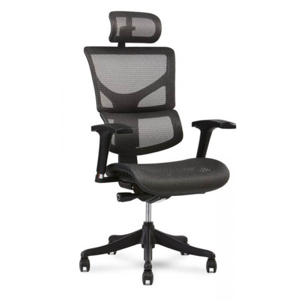 X-1 Office Task Chair